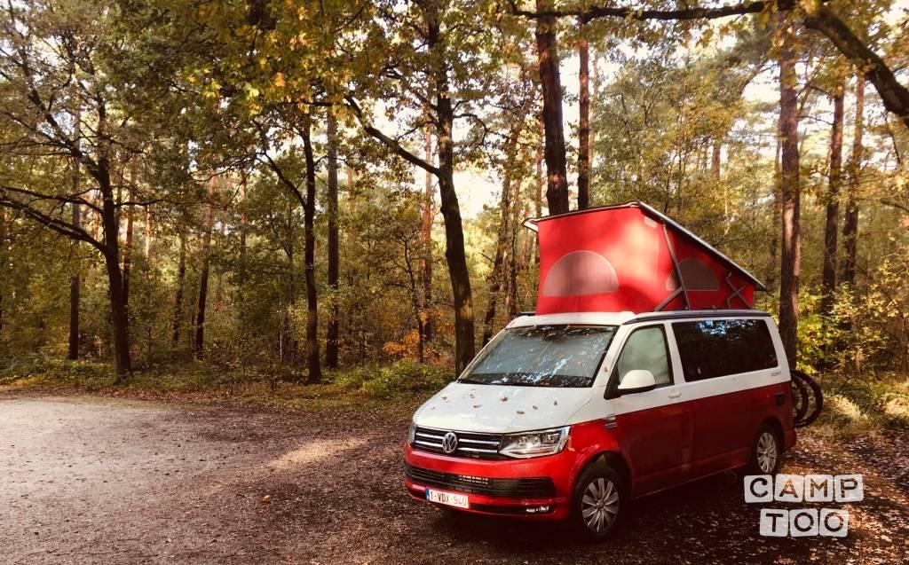 Volkswagen camper from 2018: photo 1/29
