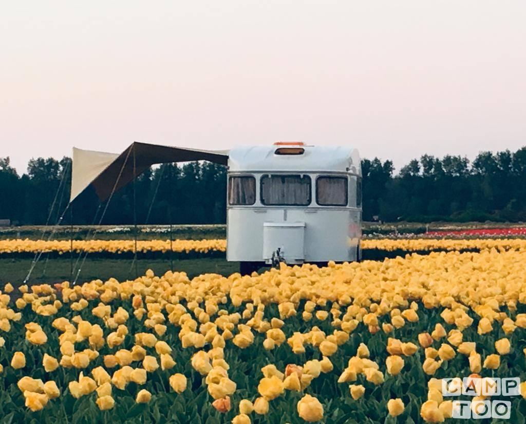 Constructam caravan from 1977: photo 1/35