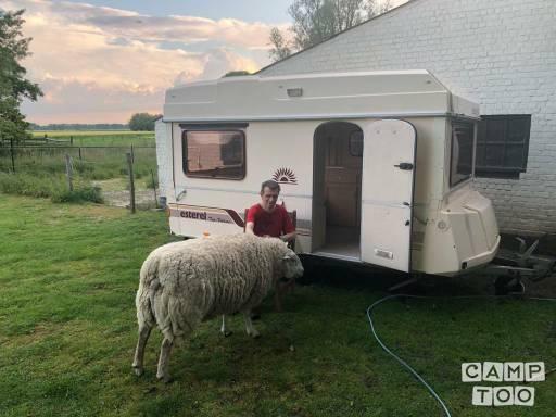 Et encore faire du camping avec mouton.jpg