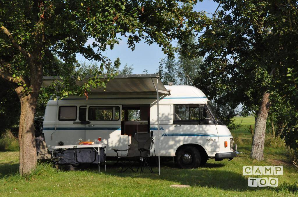 Mercedes benz 306 d kampeerauto camper from 1976 campers for Mercedes benz rv rentals